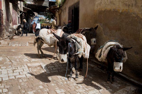 maroko_106