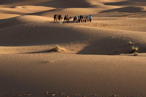 maroko_98 min