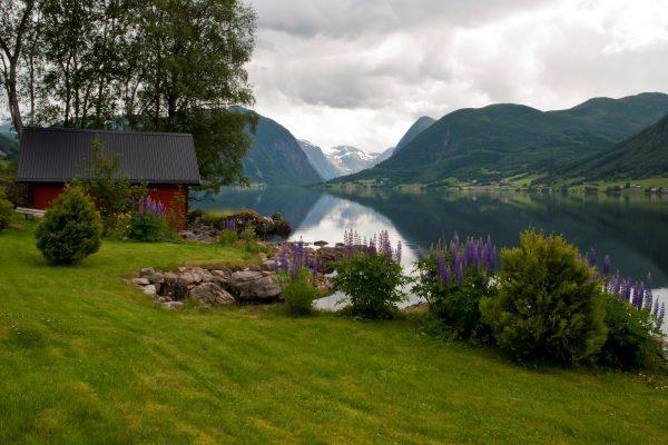norwegia 1 max